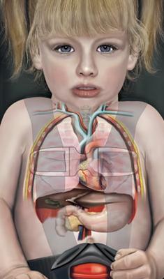 chest clip anatomy